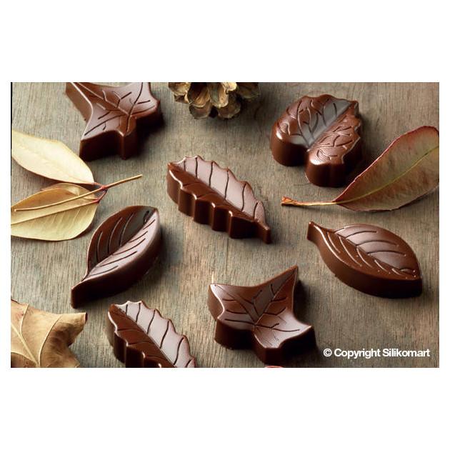 Feuilles en Chocolat realisees avec le moule a chocolat easy choc
