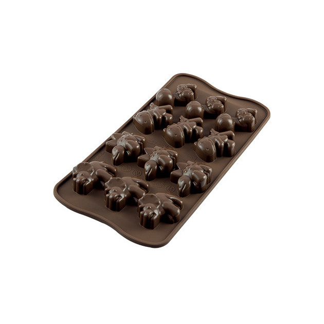 Moule a Chocolat 12 Dinosaures Easy Choc - Silicone Special Chocolat