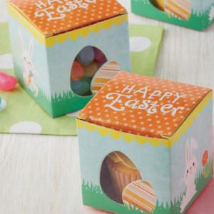 Boîte à Cupcake Pâques 5 cm (x10) Wilton