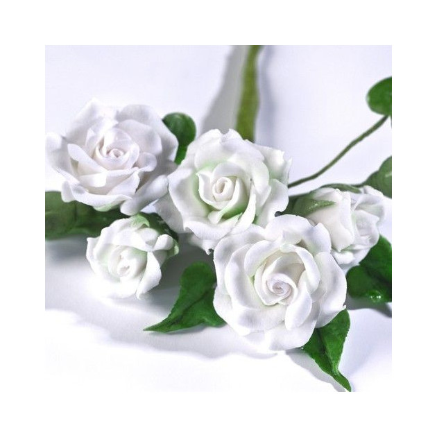 Fleurs en Gum Paste Renshaw