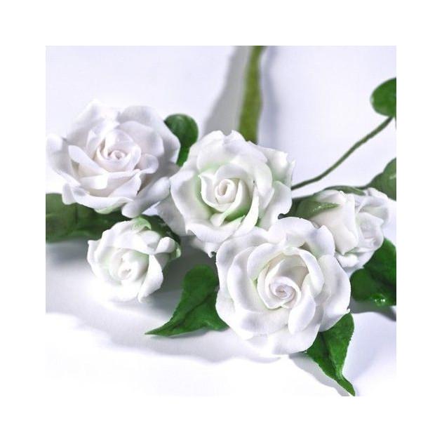 Presentation Fleurs en Gum Paste