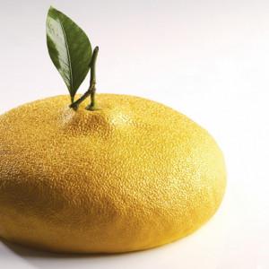 Moule Silicone Citron 1215 ml Cédric Grolet Pavoni
