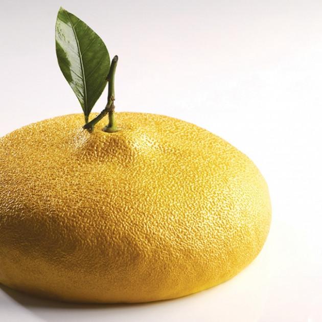 Moule Silicone Citron 1215 ml Cedric Grolet Pavoni
