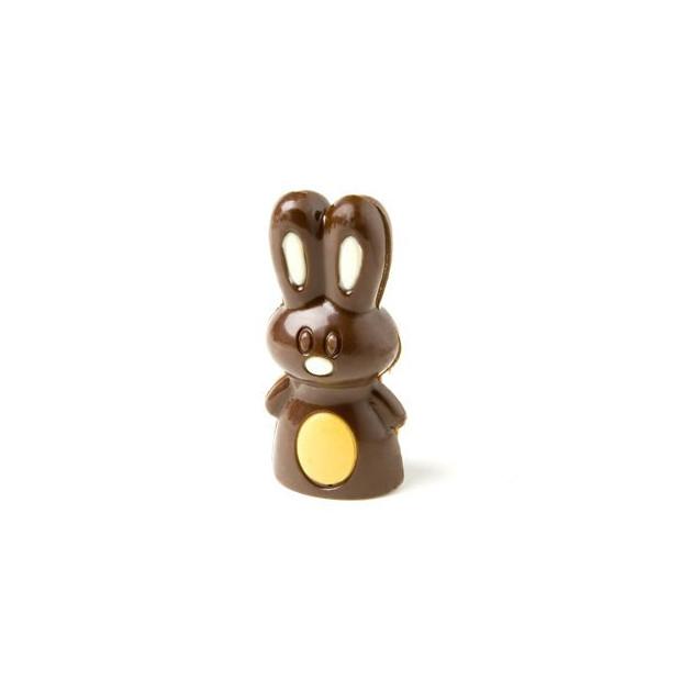 Lapin realise avec le Moule a Chocolat et colore