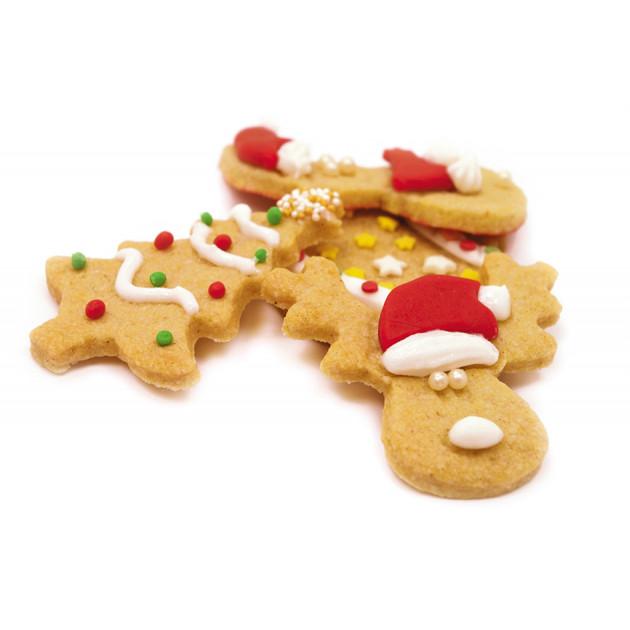 Biscuits de Noel BIO