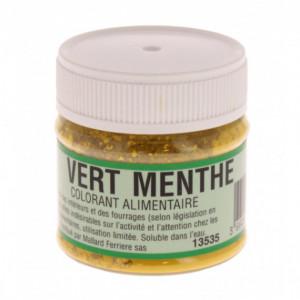 Colorant alimentaire Vert Menthe E102/E131 Poudre Hydrosoluble 20g