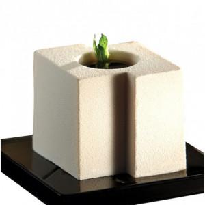 Moule Silicone Cube Tekno 5,8 x 5 cm x H 5 cm (x24) Pavoflex