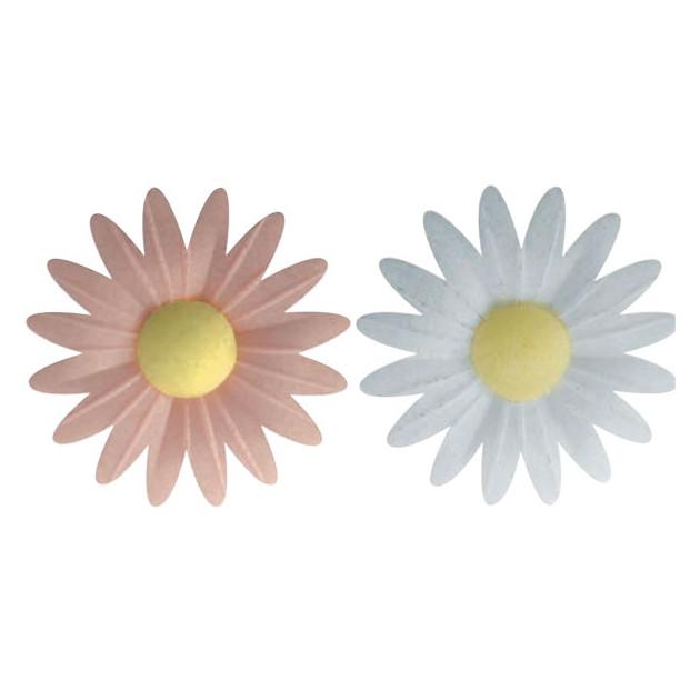 Decoration gâteau fleur azyme bio Marguerites Roses et Blanches