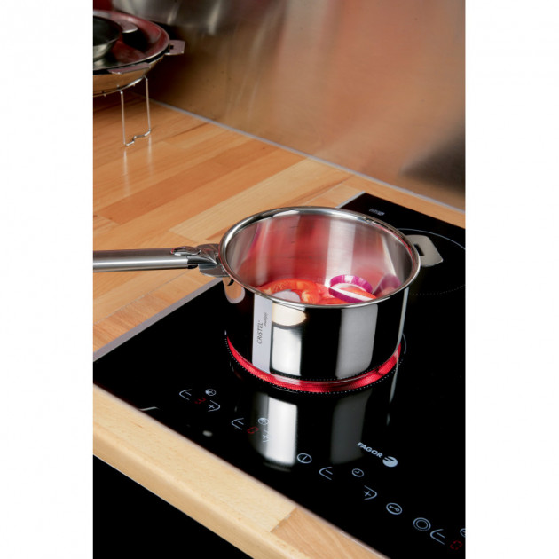 Cuisson Induction (Collection Casteline - Cristel)