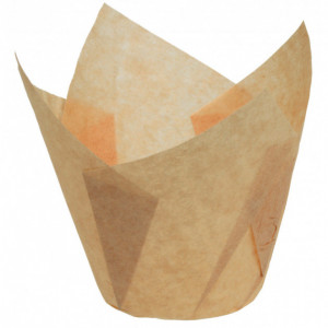 Caissettes en Papier Tulipcup Ecru Ø 5 cm H 7 cm