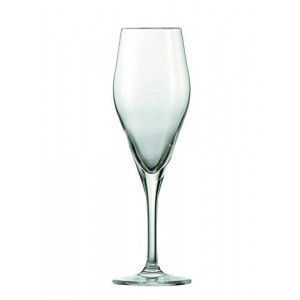 Flûte à Champagne 250 ml (x6) Schott Zwiesel AUDIENCE