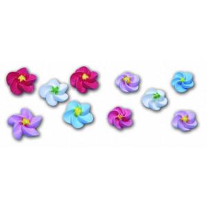 Fleur en sucre Myosotis couleurs assorties Ø 1,5 cm (x500) Mallard Ferrière
