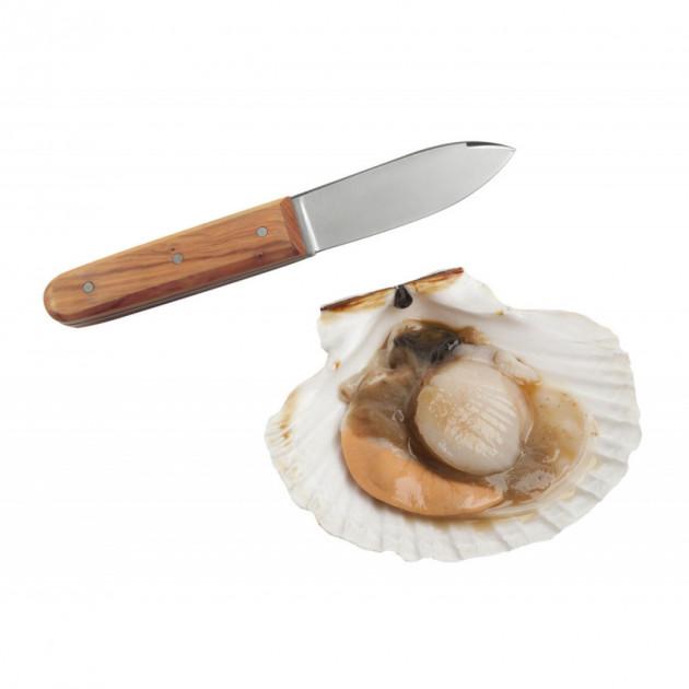 Couteau Coquille Saint Jacques La Bonne Graine Tellier