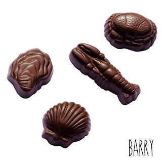 Moule Chocolat Coquillages et Crustacés (x24) Barry