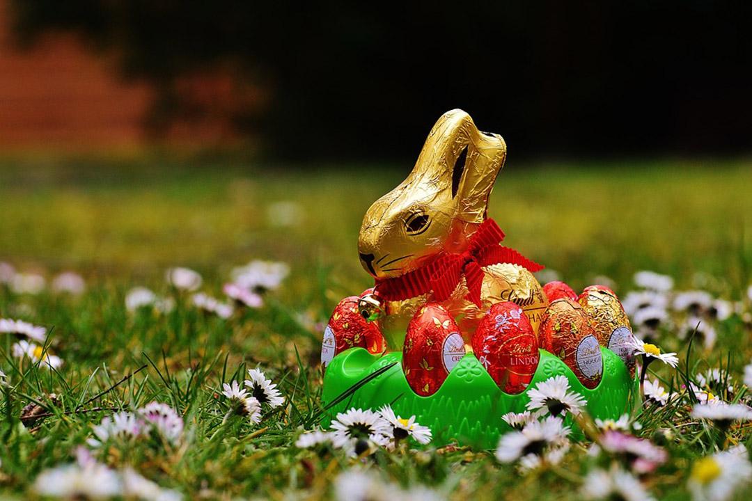 Découvrez de délicieuses recettes pour sauver ses chocolats de Pâques !