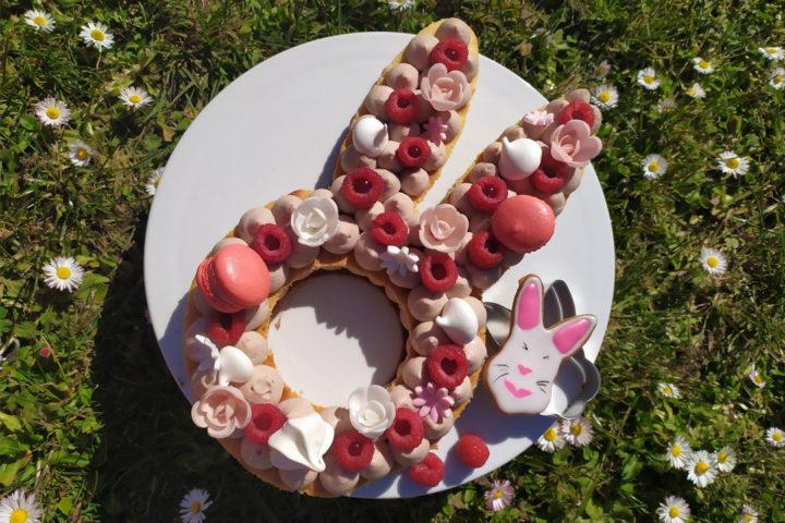 Gâteau Lapin : Bunny Cake Framboise