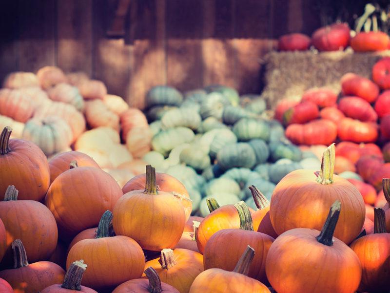 Produits d'automne