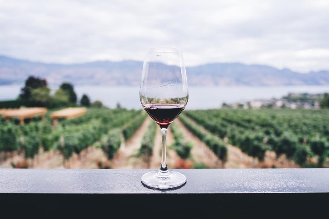Conseils pour servir le vin
